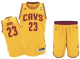 Lebron James Cavaliers Alternate jersey + shorts (swingman)